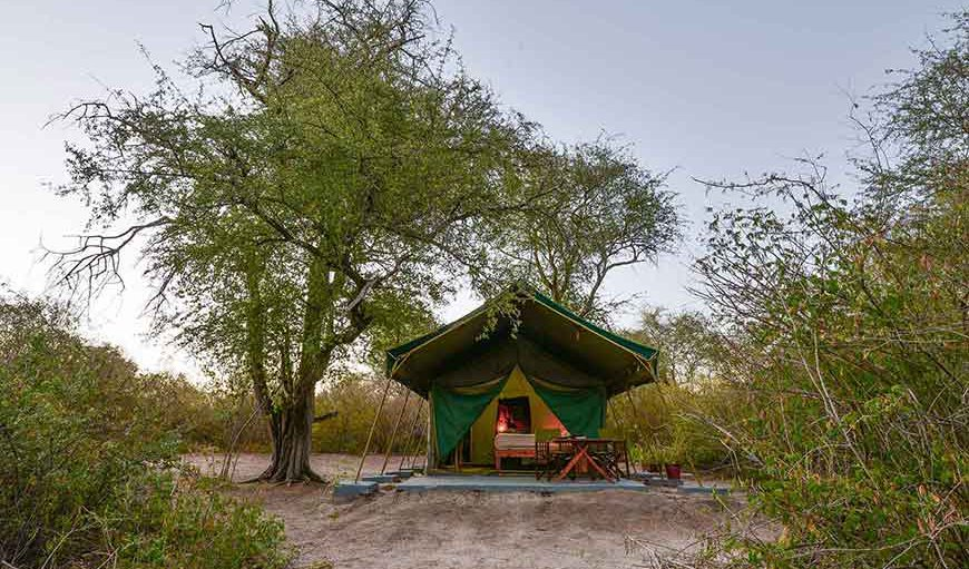 Tuskers Safari Camp in Maun, North West District, Botswana