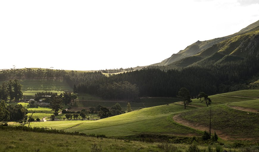 The beautiful surroundings and setting of Hermitage Huisies in Swellendam, Western Cape , South Africa