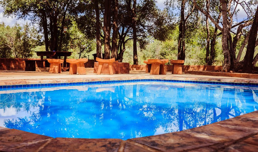 The Kudu Camp has a private pool that looks out into the bush surroundings of the farm