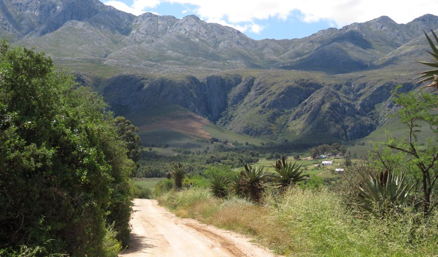 Entrance to farm road in Matjiesrivier, Oudtshoorn, Western Cape , South Africa