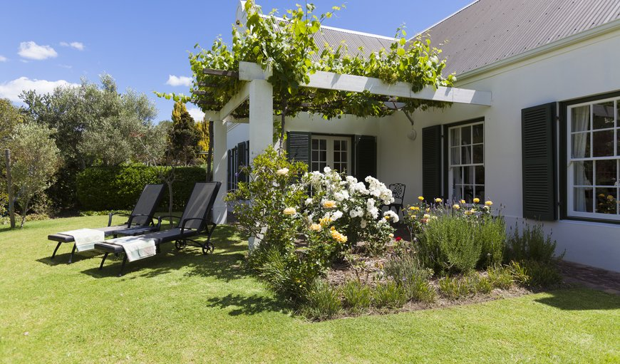 Welcome to Sanddrif Guest Farm in Stellenbosch, Western Cape , South Africa