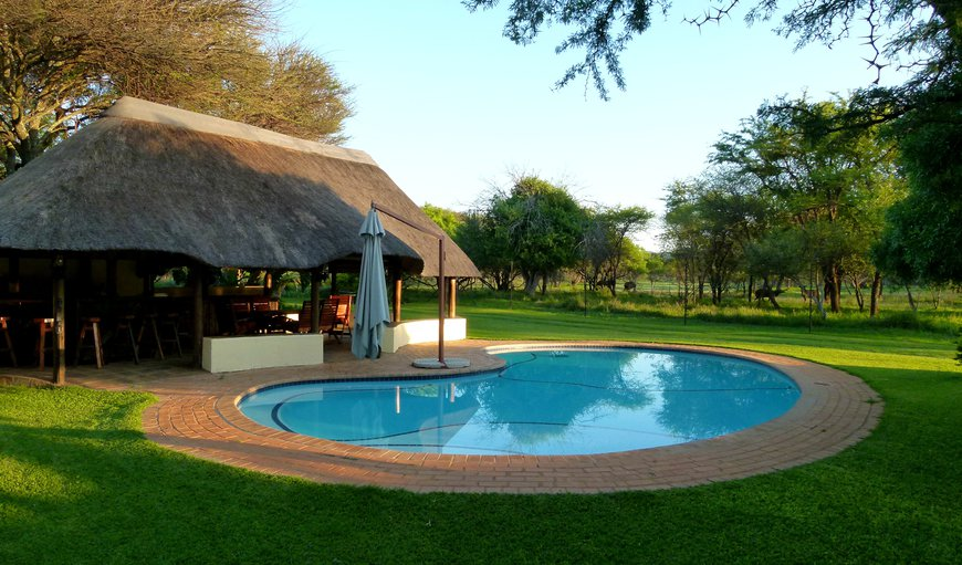 Welcome to Re a Lora Safaris in Bela Bela (Warmbaths), Limpopo, South Africa