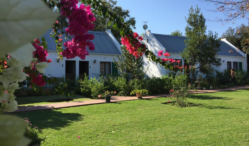 Eventide Lodge in Plettenberg Bay, Western Cape , South Africa
