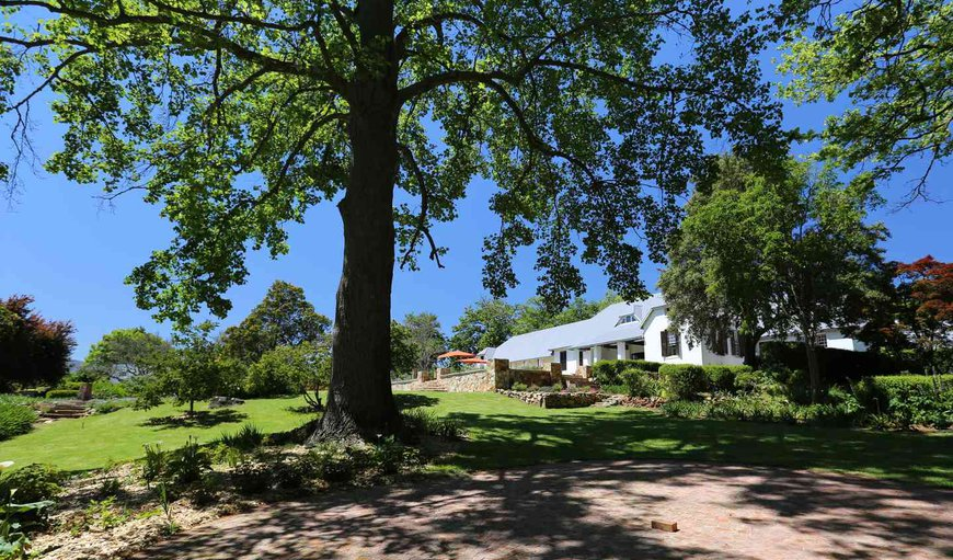Wrapped by orchards, vineyards and sloping pasture, this wonderful historic homestead has been renovated into a Victorian-style home and still boasts with its original oak and hickory floorboards.