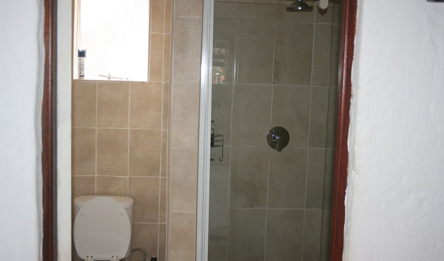 Unit 3 Bathroom shower