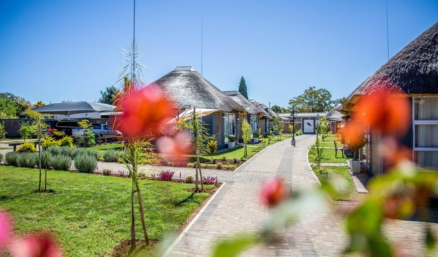 The TshiBerry Bed & Breakfast in Rustenburg, North West Province, South Africa