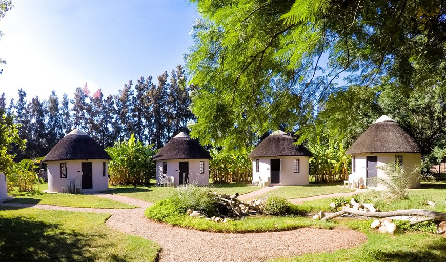 Addo African Home, Restaurant & Safari in Addo, Eastern Cape, South Africa