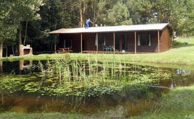 Plett Forest Cabins image