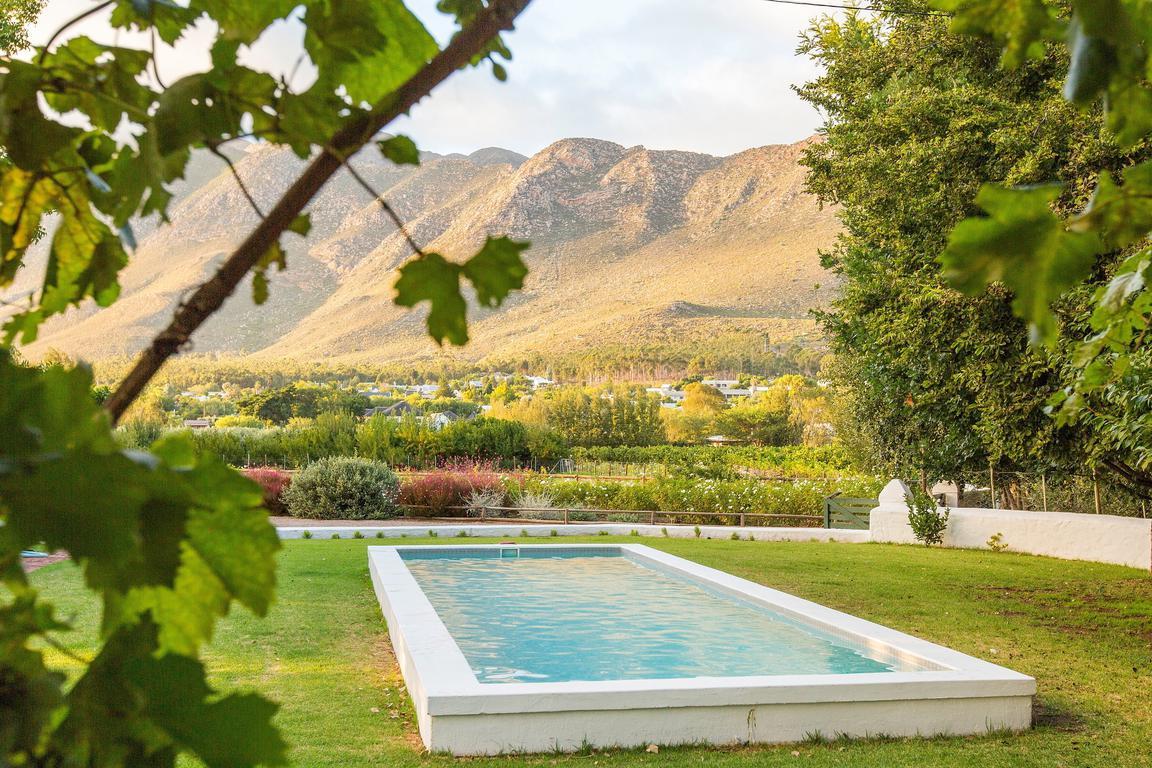 Klein nektar wine olive estate in montagu best price guaranteed - Swimmingpool klein ...