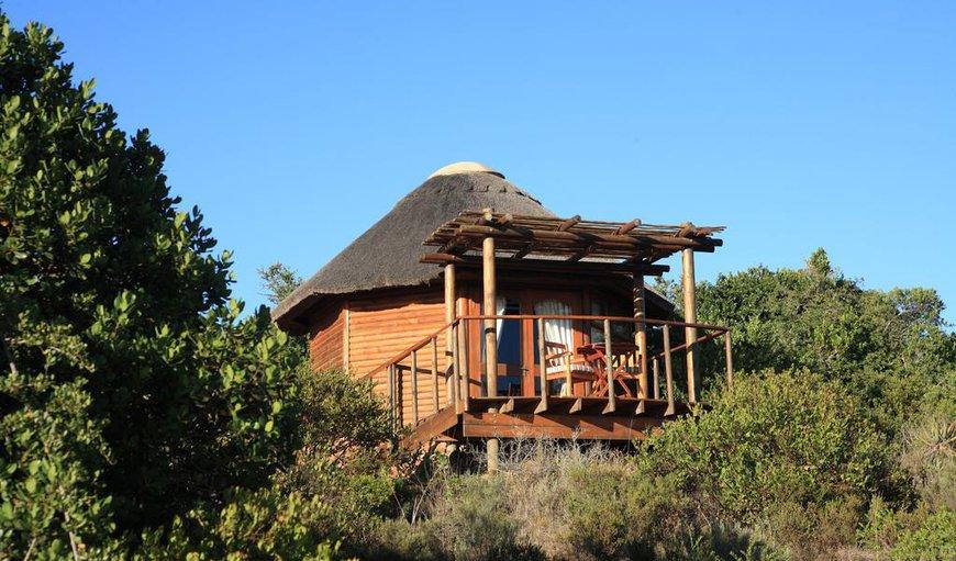 Garden Route Game Lodge In Albertinia Best Price Guaranteed