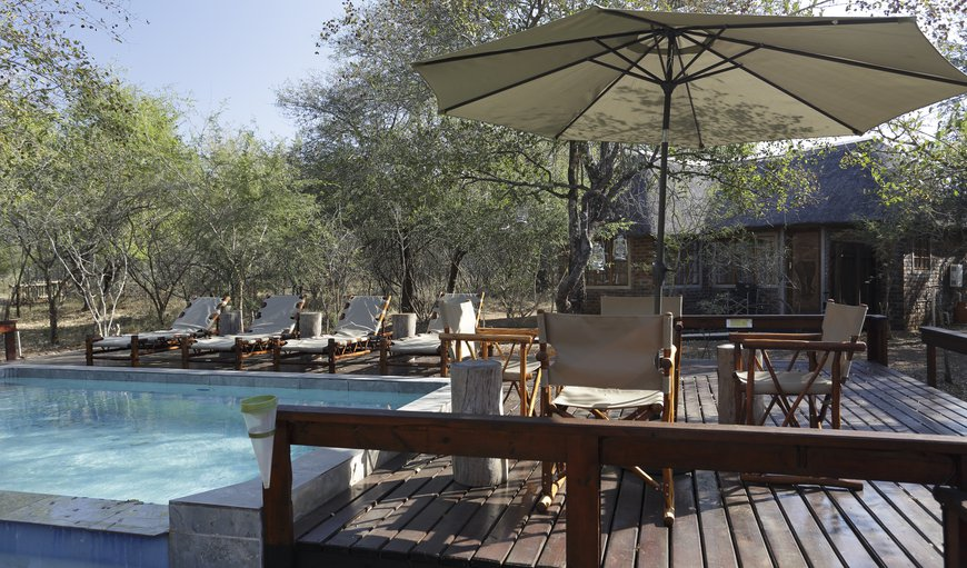 Welcome to Tusk Bush Lodge. in Marloth Park, Mpumalanga, South Africa