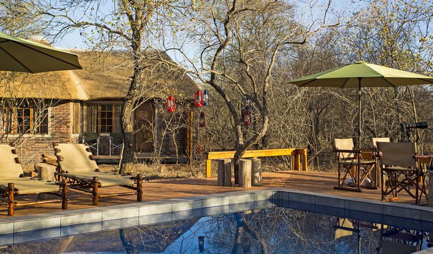 Tusk Bush Lodge is a luxury private bush lodge offering Kruger safari accommodation in Marloth Park.