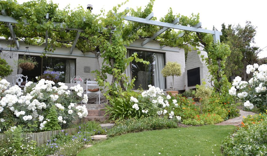 Three Oaks Bed & Breakfast in Durbanville, Cape Town, Western Cape , South Africa