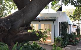La Bella B&B Under the Fig Tree image