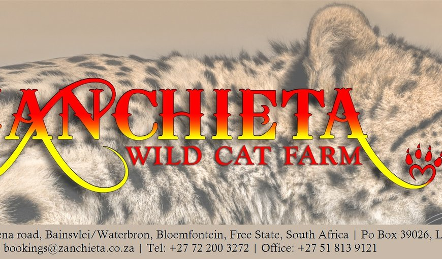 Zanchieta Guest Farm in Bloemfontein, Free State Province, South Africa