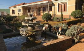 Clarens Butterfly Villa image