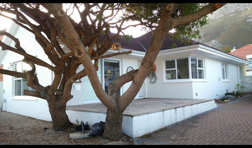 Welcome to the tranquil Wild Pepper Tree Guest House in Voelklip, Hermanus, Western Cape, South Africa