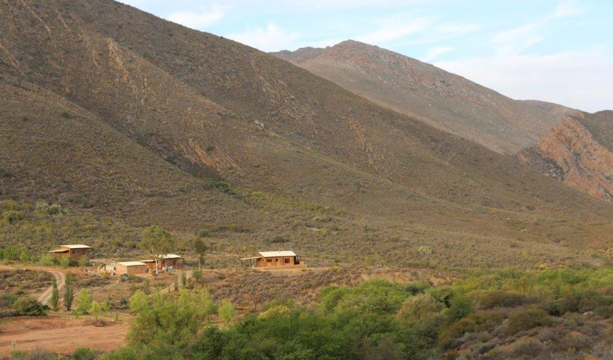 Giant, Pied & Brown-hooded Cottages with communal braai and eco pool