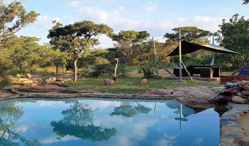 Swimming pool in Vaalwater, Limpopo, South Africa