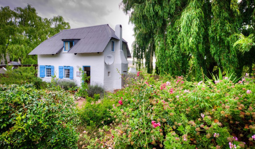 Little Oak Cottage in Greyton, Western Cape , South Africa