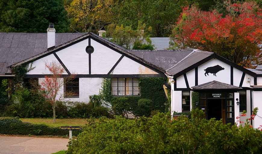 Welcome to Hogsback Inn in Hogsback, Eastern Cape, South Africa