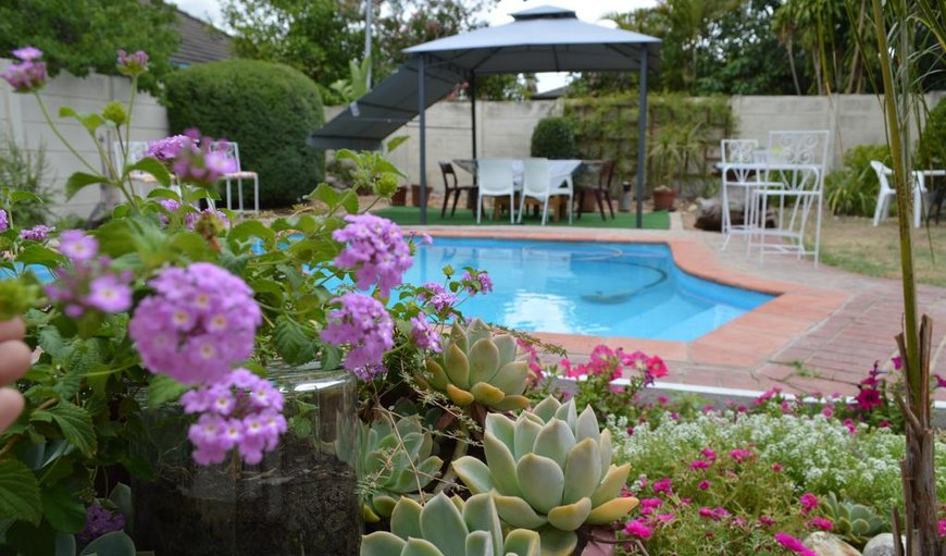 Agathos Bed and Breakfast in Paarl, Western Cape, South Africa
