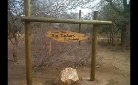Big Tuskers Bush Camp image