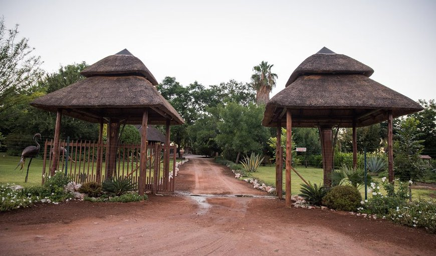 Welcome to Belihante Lodge  in Upington, Northern Cape, South Africa