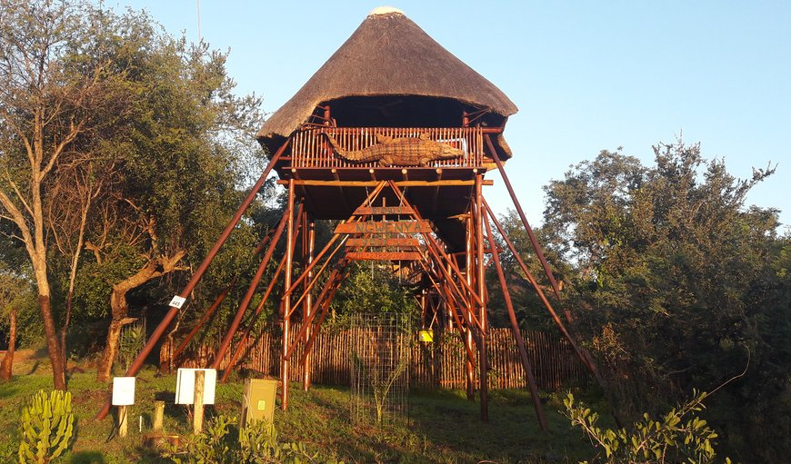 Welcome to Bona Ngwenya Lodge. in Marloth Park, Mpumalanga, South Africa