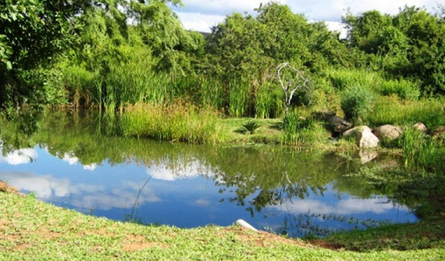 Hippo's Haven – Hans Merensky in Phalaborwa, Limpopo, South Africa