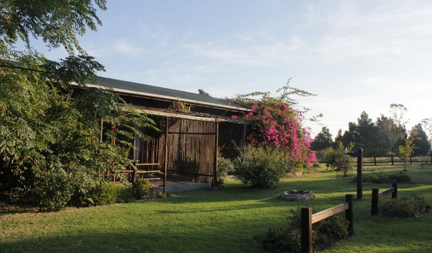 Welcome to Peace of Eden Vegan Backpackers Lodge & Retreat! in Rheenendal, Knysna, Western Cape , South Africa