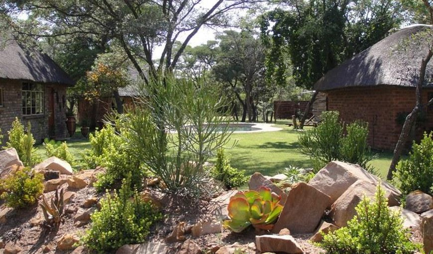 Olievenhoutsrus Guest and Game Farm in Vaalwater, Limpopo, South Africa