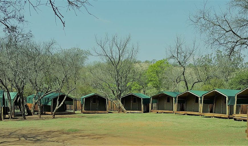 Leeuwenkloof camps.