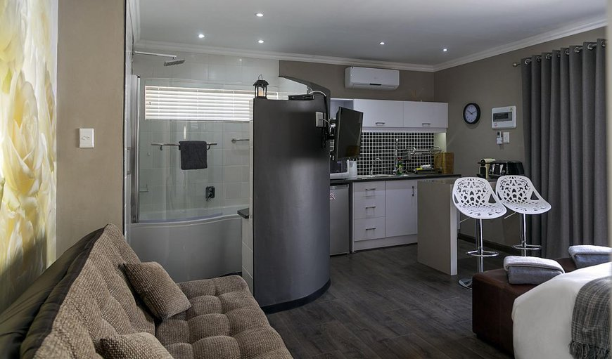 Hummingbird Suite - Rose open plan unit with a couch and kitchenette.