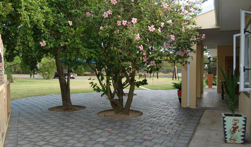 Ebubeleni Guest House in Port Elizabeth, Eastern Cape, South Africa