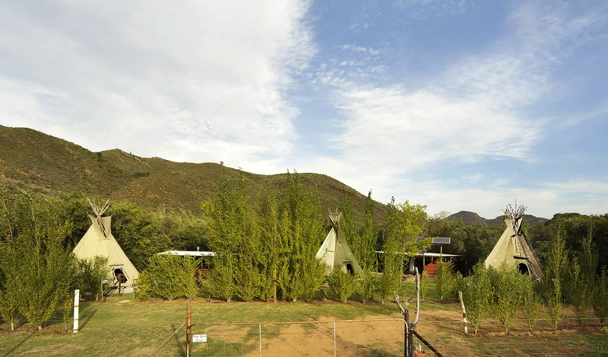 Lancewood TiPi's in Robertson, Western Cape, South Africa