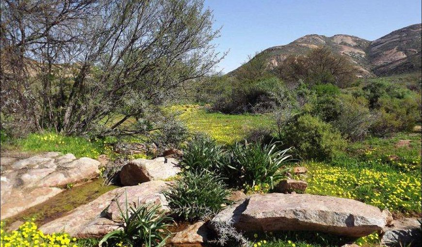 Verbe Farm Accommodation in Kamieskroon, Northern Cape, South Africa