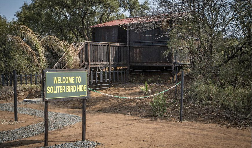 Welcome to Soliter Bird Hide. in Rustenburg, North West Province, South Africa