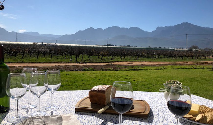 Esperance Farmstay @ Vineyard in Worcester, Western Cape , South Africa
