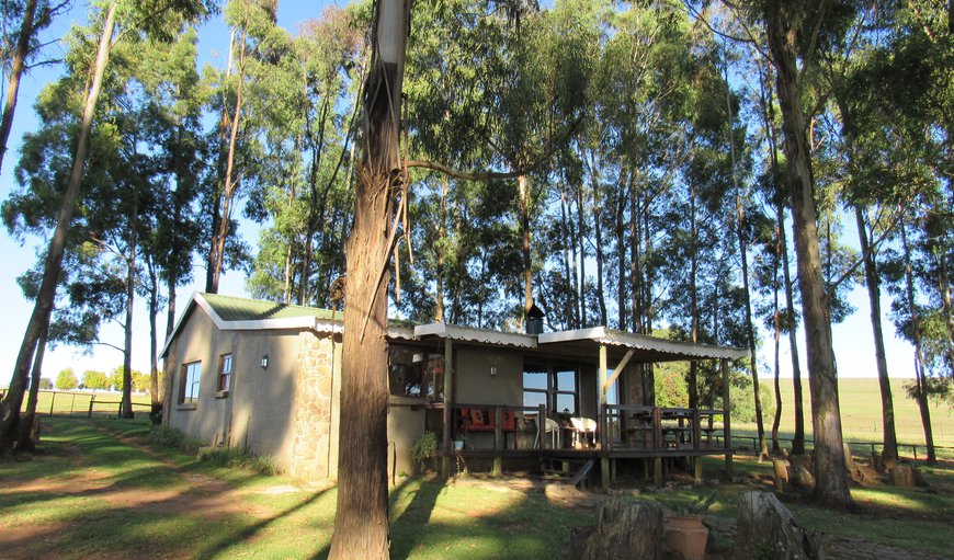 TroutWoods Cottage in Machadodorp, Mpumalanga, South Africa
