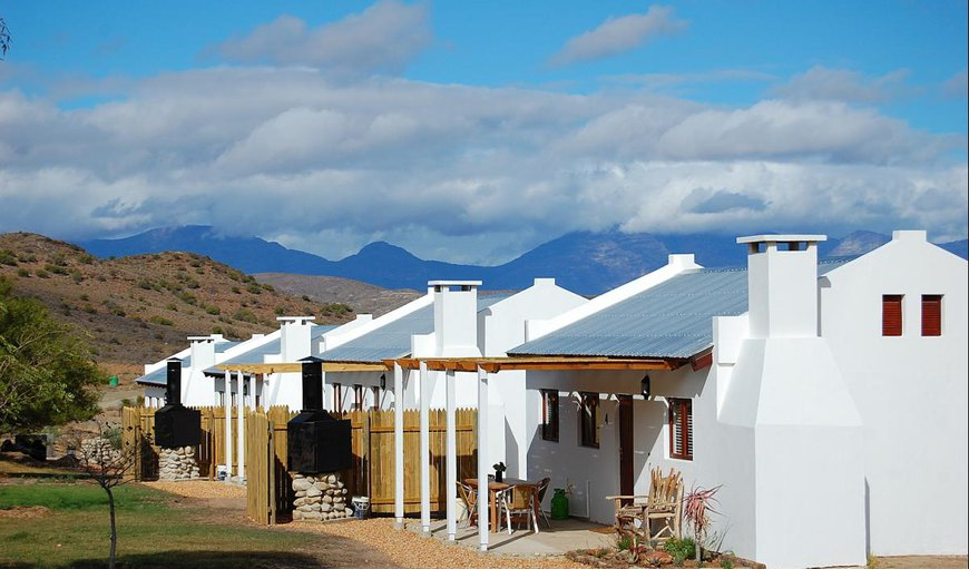 The Cat and Cow Guest Farm in Vanwyksdorp, Western Cape, South Africa