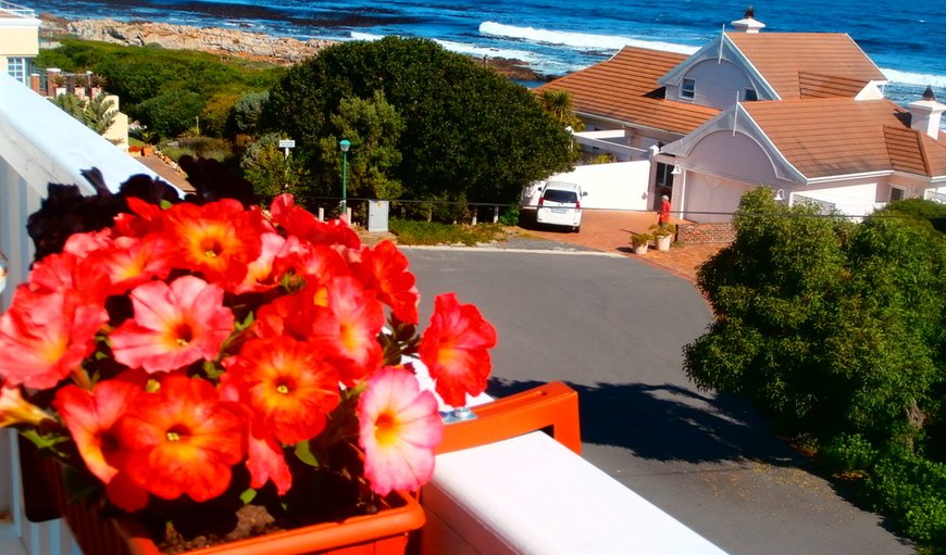 Welcome to Belle Vue Guest House in Vermont, Hermanus, Western Cape , South Africa