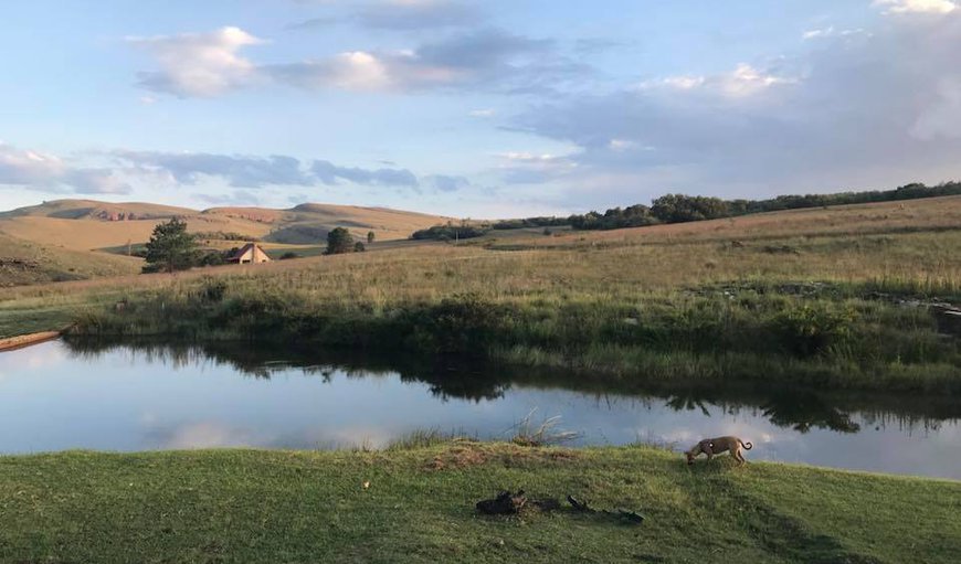 Welcome to Highland Giants Estate in Dullstroom, Mpumalanga, South Africa