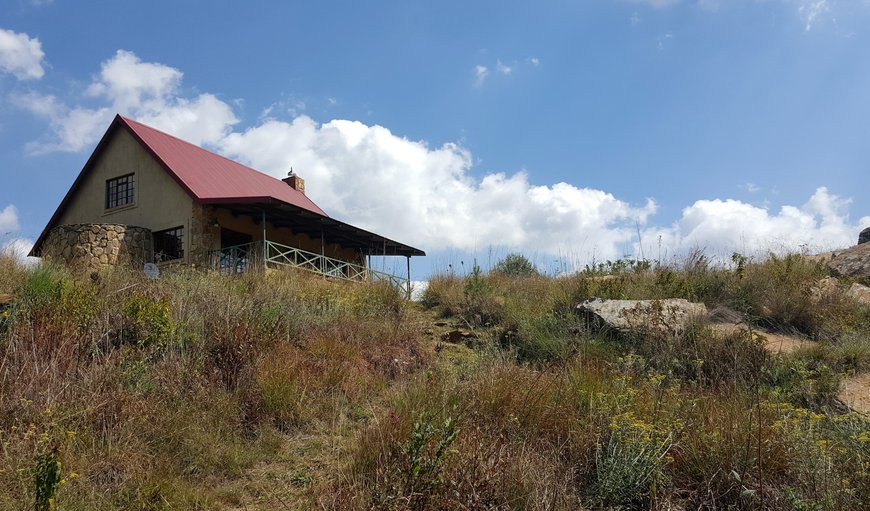 Bald Ibis Cottage - Outside