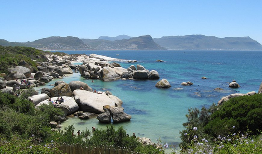 View of Boulders Beach and False Bay from Bosky Dell Guest Lodge in Simon's Town, Cape Town, Western Cape , South Africa