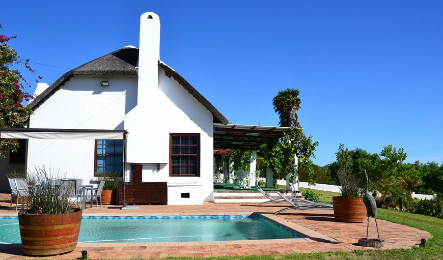 Guest House Pool in Stellenbosch, Western Cape , South Africa
