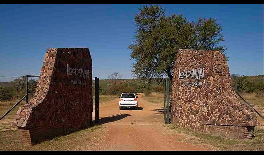 Welcome to Loodswaai Game Ranch. in Rust de Winter, Gauteng, South Africa