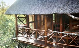 Lion Tree Bush Lodge image