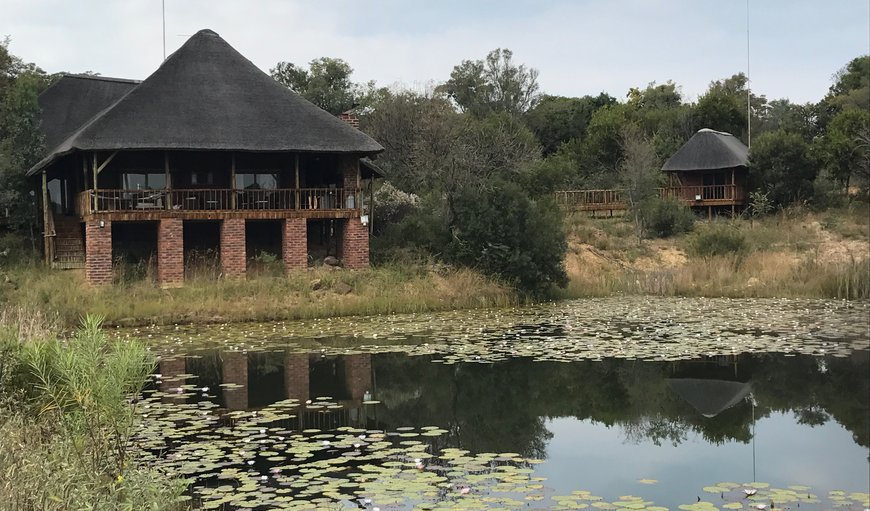 Majestic Game Lodge in Vaalwater, Limpopo, South Africa
