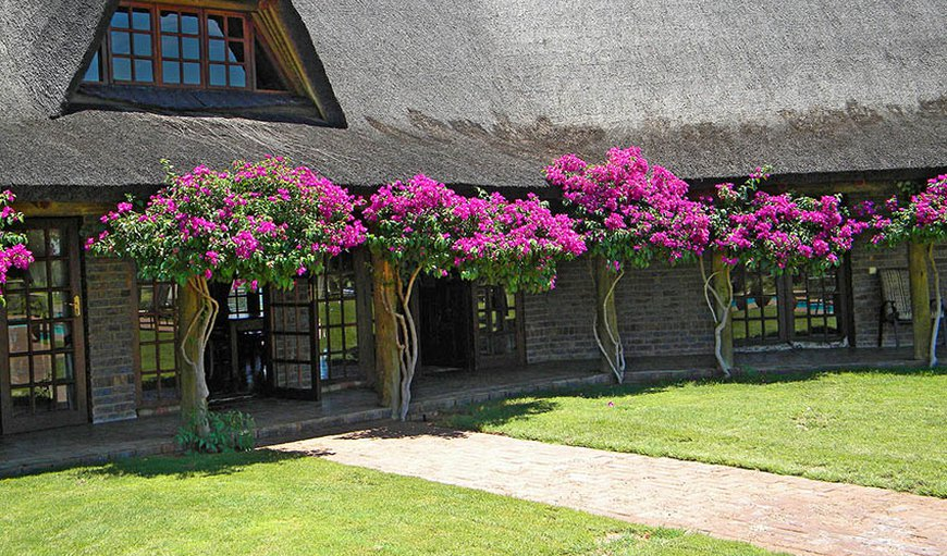 Kalahari Rangers Lodge in Kuruman, Northern Cape, South Africa